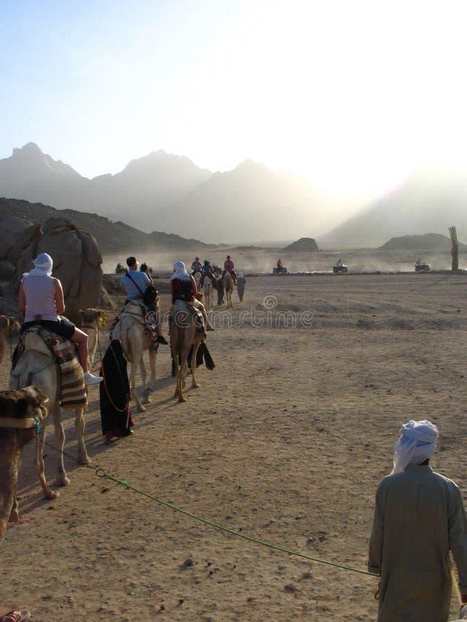 Travel through desert royalty free stock photo
