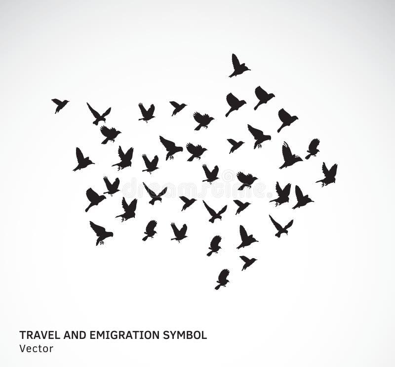 Travel and emigration birds symbol black and white. Color vector illustration. EPS8 royalty free illustration