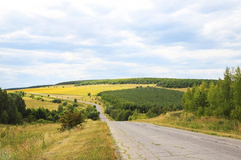 Travel through the endless expanses of summer in warm weather. The road among the hills, sunflower fields, forests and meadows royalty free stock photo