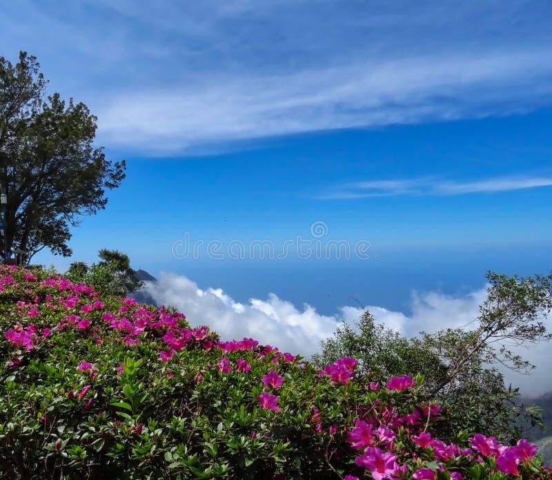 Travel photography - Caracas, Venezuela. stock photography