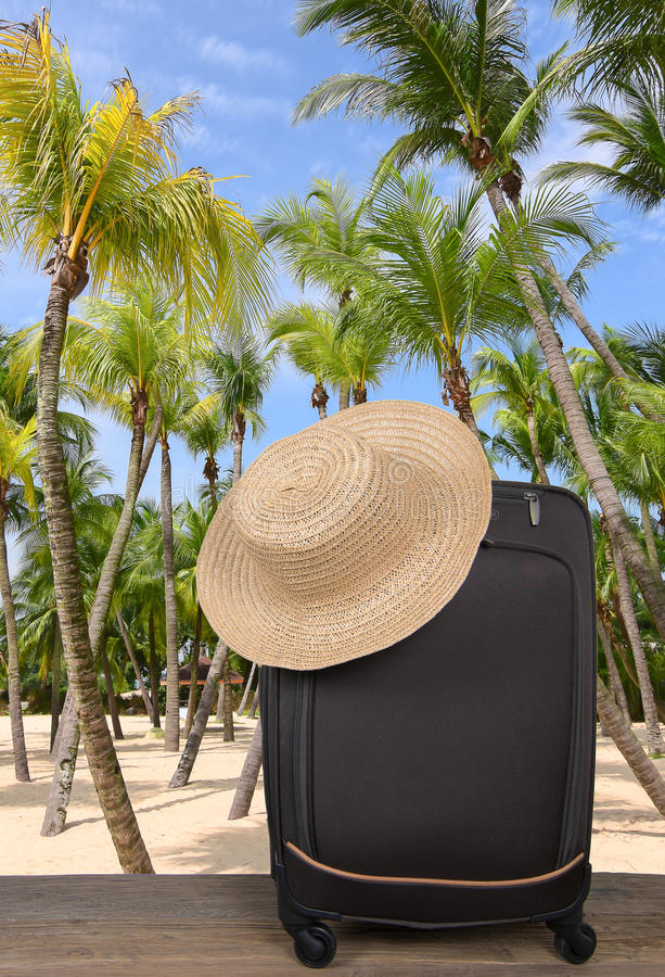 A travel suitcase on a tropical beach with palm trees. stock images