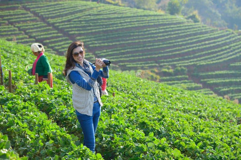 Travele держа камеру на красивой ферме клубники в morni стоковая фотография rf