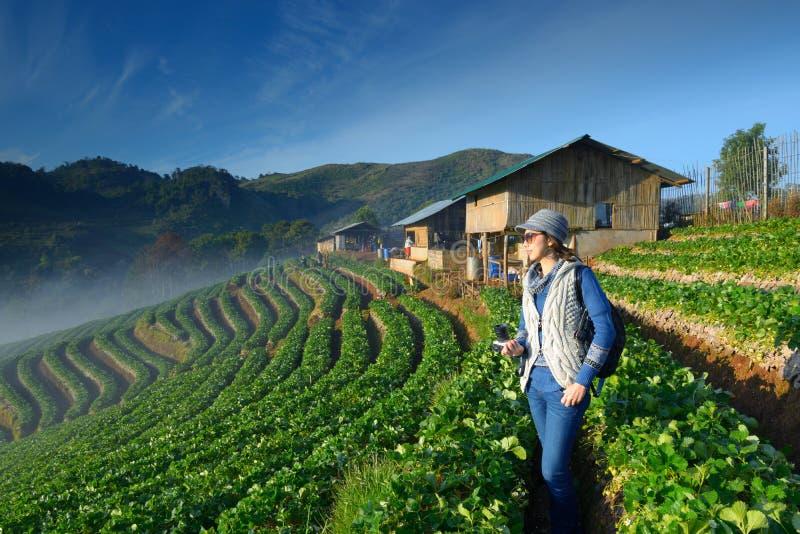Travele держа камеру на красивой ферме клубники стоковые фото