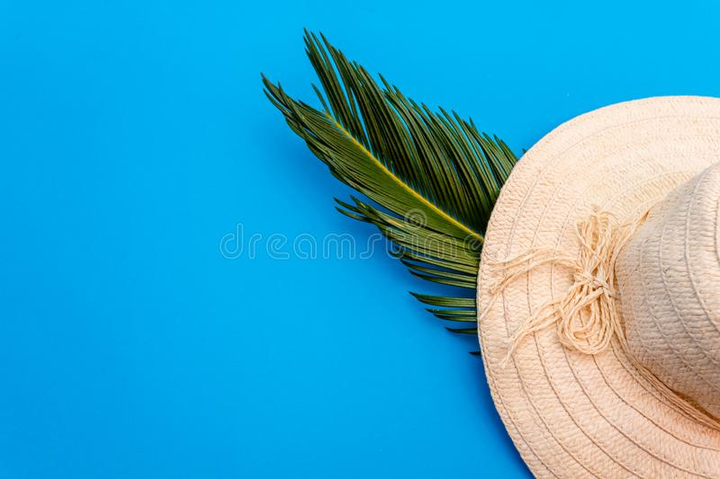 Traveler accessories, tropical palm leaf branches on blue background with empty space for text. Travel vacation concept. Summer royalty free stock photos