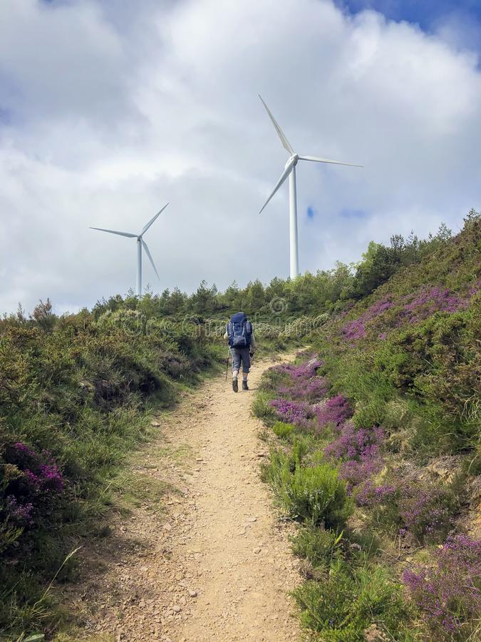 Traveler with a backpack and trekking poles climbs up a ground road up to a hill where wind generators are visible. Traveler with a backpack and trekking sticks royalty free stock photos