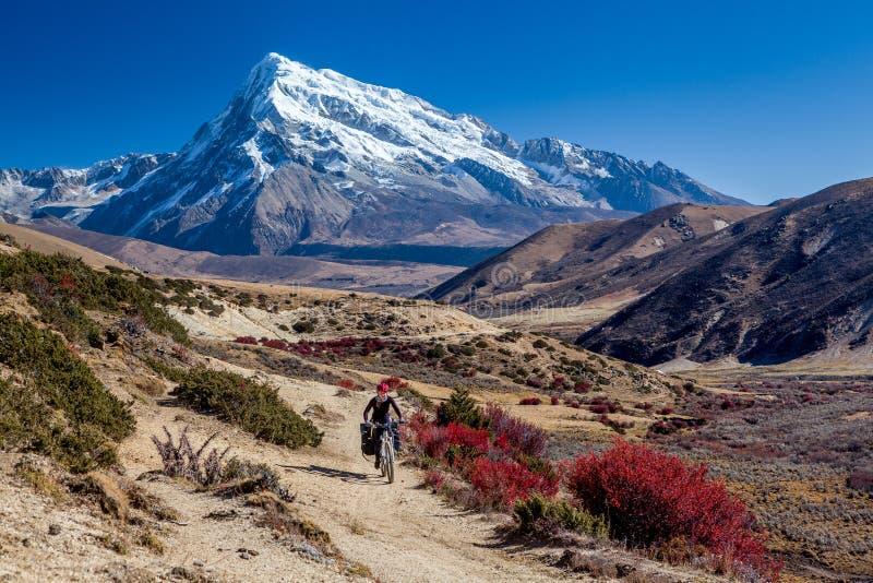 Traveler on mountain bike cycling trail in mountains stock photos