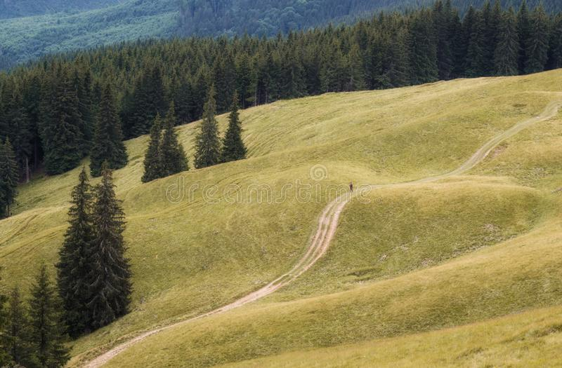 A traveler walking on a mountain road stock images