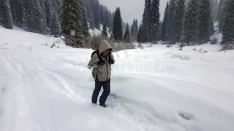 A traveler in the winter forest. royalty free stock photography