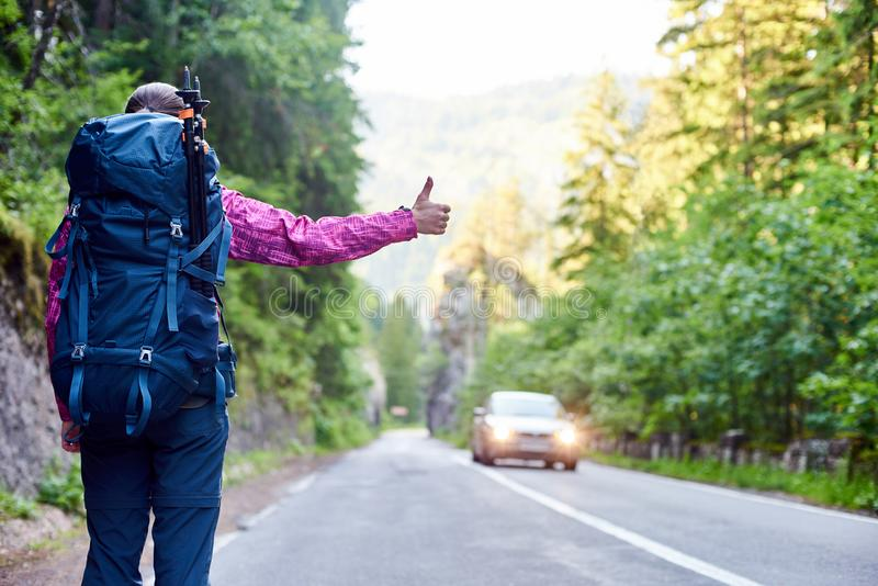 Traveler woman catching car on road in Bicaz Gorge, Romania royalty free stock image