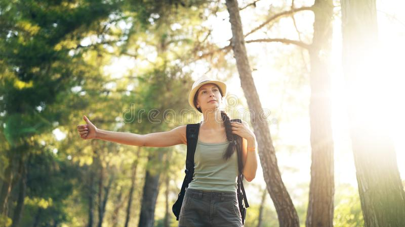 Traveler woman hitchhiking on a sunny forest road. Tourist girl looking for ride to start her journey royalty free stock image