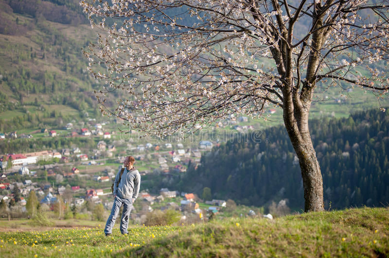Traveler young man with backpack on hill. Traveler man with backpack standing on hill with yellow flowers near lonely blooming tree with small town and forest stock photography