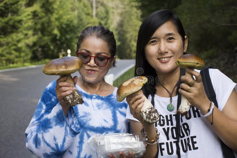 Travelers thai women mother and daughter hunter-gatherer and picking mushroom in forest. Travelers thai women mother and daughter hunter-gatherer and picking and stock photos
