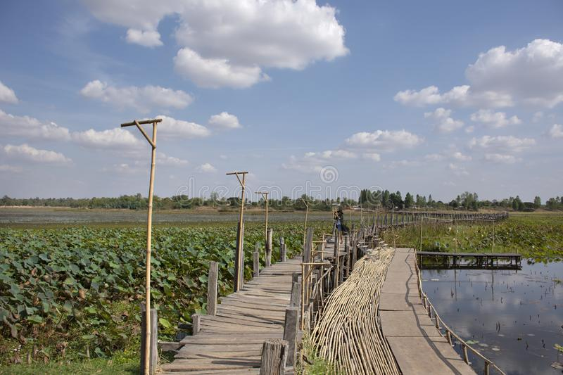 Kae Dam long wooden bridge for thai people and foreigner travelers walking travel and visit at Maha Sarakham, Thailand. Kae Dam long wooden bridge for thai stock image