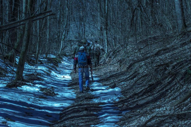 Travelers follow the path in the night forest royalty free stock photo