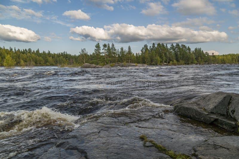 Очень быстрый поток. Traveling around Karelia. Very fast flow. Water rolls along a rocky shore, foams royalty free stock images