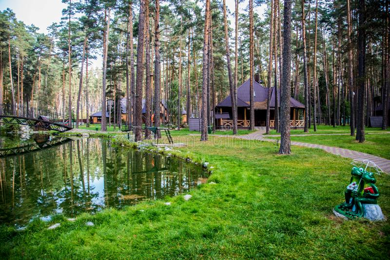 Traveling in Bryansk, you will see many amazing and beautiful places, and this is one of them!. Zhukovka, the nature is magnificent, forest, pines, sanatorium stock photos