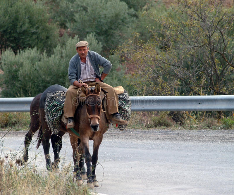 Traveling by donkey royalty free stock photography