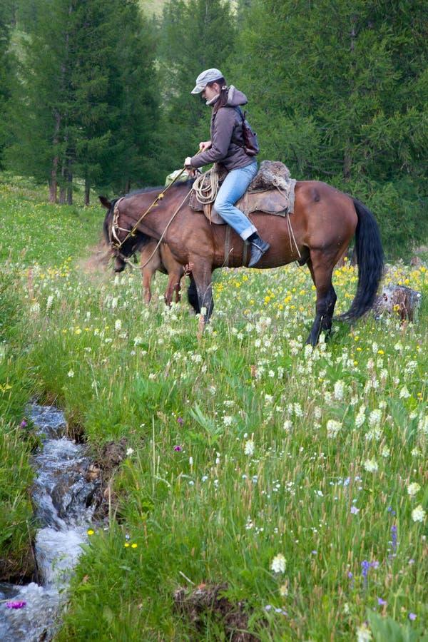 Traveling on horseback stock image