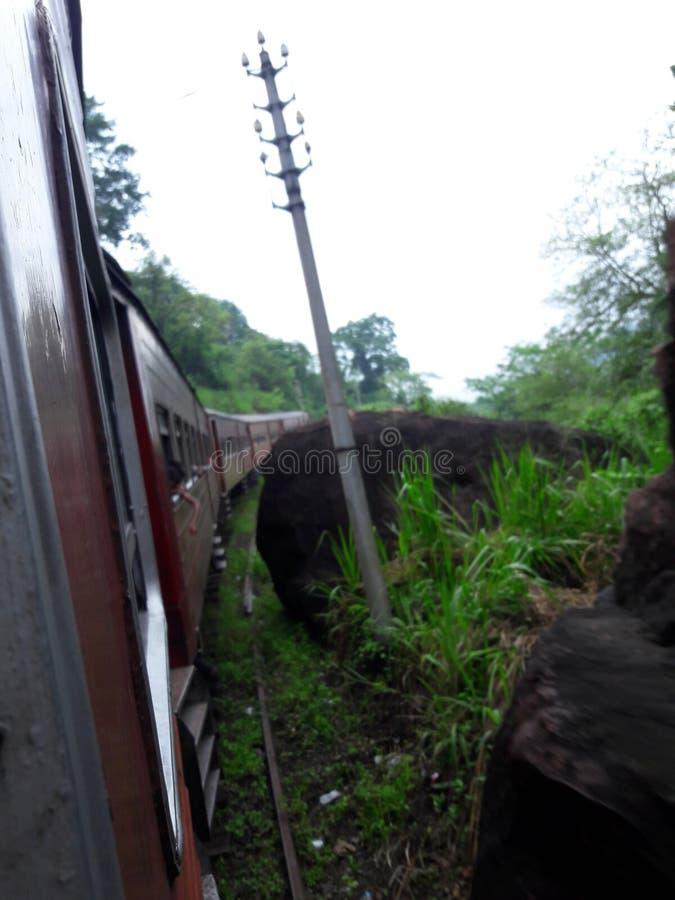 Travell in treno fotografie stock libere da diritti