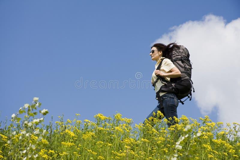 Traveller stock image