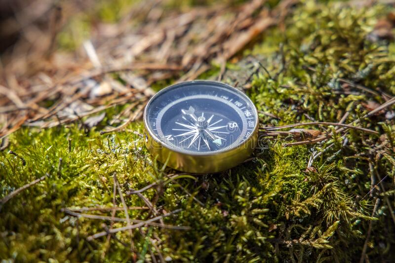 Traveller compass on the grass in the forest royalty free stock photos