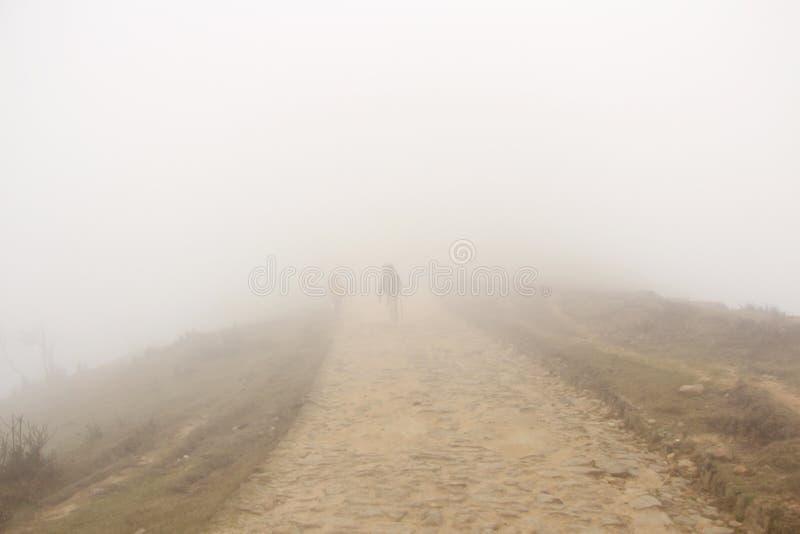 Traveller women walking on way in fog. stock photos