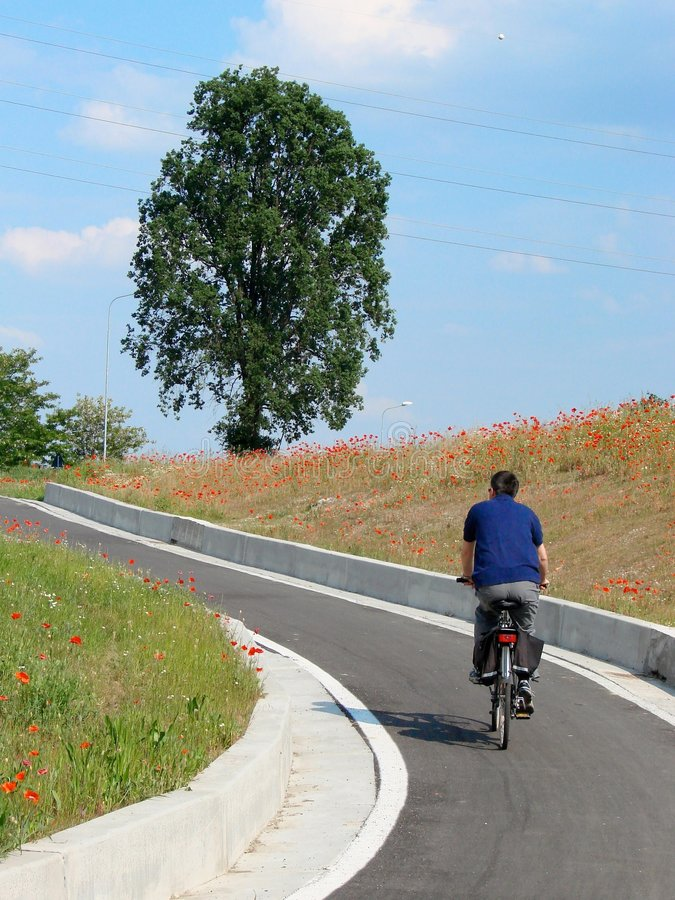 Download Travelling by bike stock image. Image of poppies, ride - 5152983