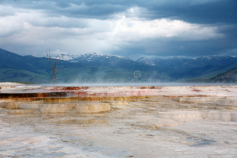 Traver-tine terrace in Yellowstone national park royalty free stock image