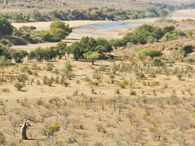 Traversée de la rivière du Limpopo le paysage de désert de la nation de Mapungubwe photographie stock libre de droits