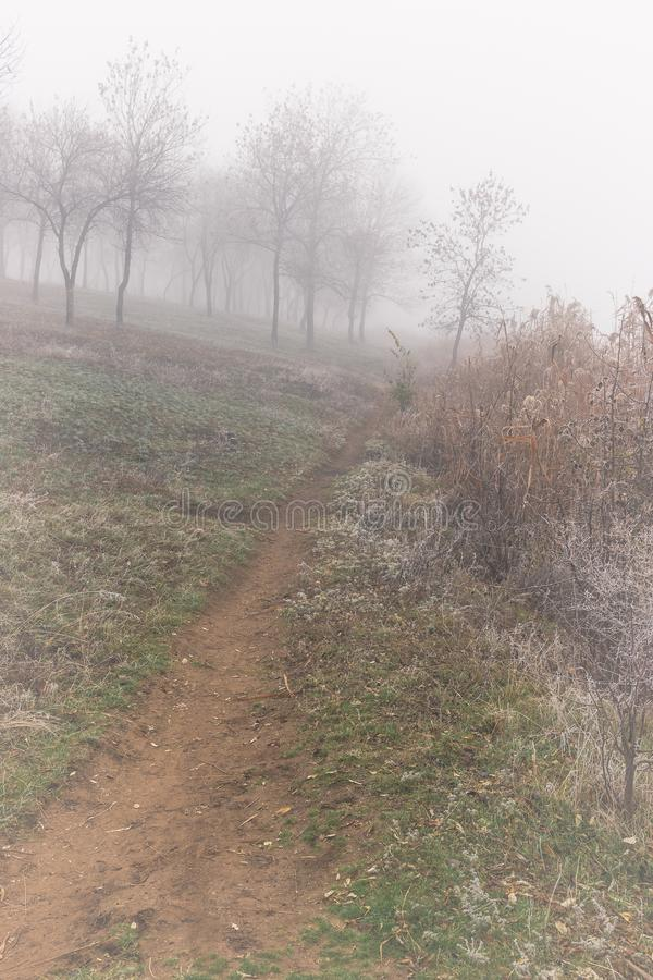 Traversée le long de l'étang par un matin d'automne brumeux Hoarfrost sur les plantes photos stock