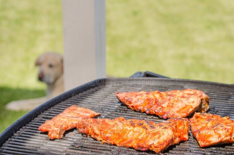 Travers de porc sur le gril avec la marinade chaude photos stock