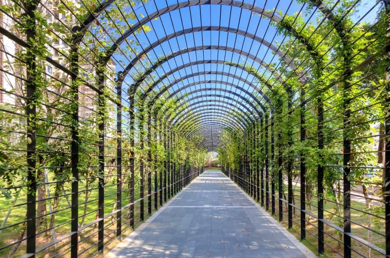 Traverser un tunnel rempli d'arbustes et d'arbres dans un petit parc de rue photos libres de droits