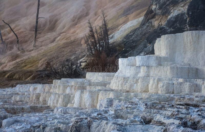 Travertijnterrassen bij de Mammoet Hete Lentes in het Nationale Park van Yellowstone royalty-vrije stock foto