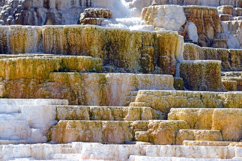 Travertijnterrassen, de Mammoet hete lentes, het Nationale Park van Yellowstone, Wyoming stock fotografie