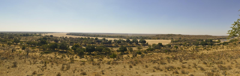 Travesía de río del Limpopo el paisaje del desierto de la nación de Mapungubwe imágenes de archivo libres de regalías
