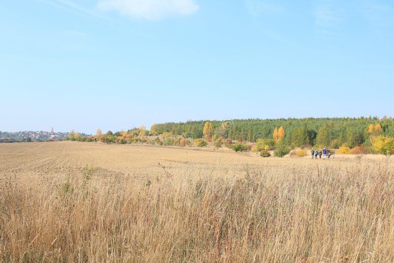 Traviny Nature Reserve, Czech Republic royalty free stock photo