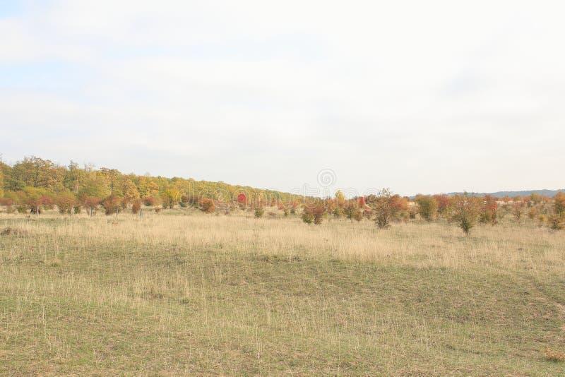 Traviny Nature Reserve, Czech Republic royalty free stock photos