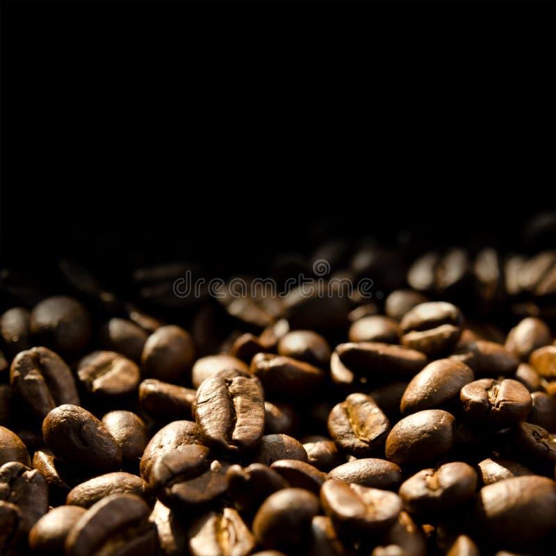 travt bönacloseupkaffe arkivbild