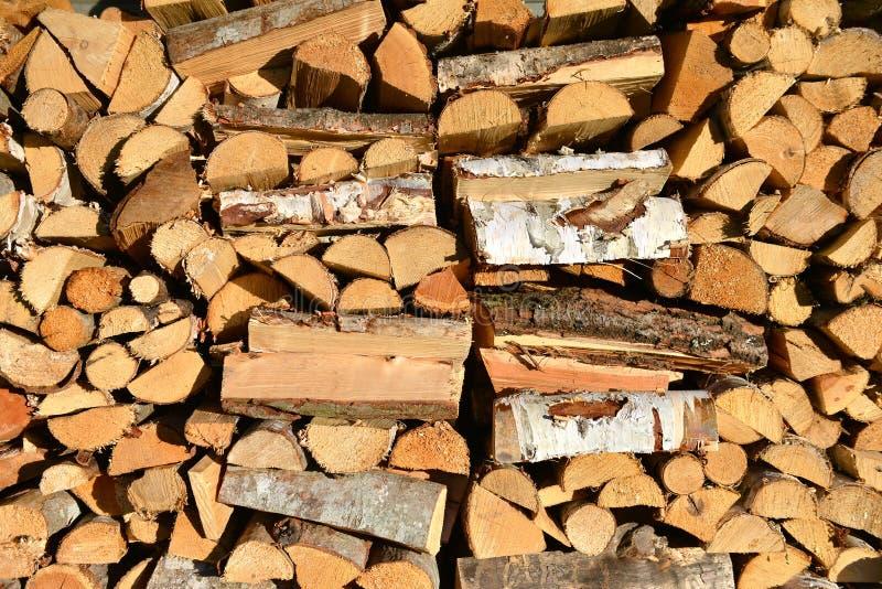 Travt vedträ, wood textur royaltyfria bilder