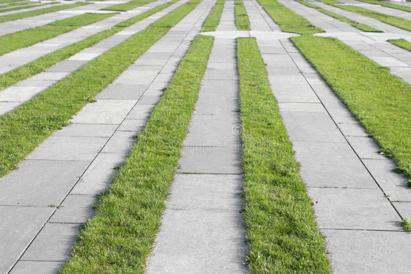 trawa chodnik pasy zdjęcie royalty free