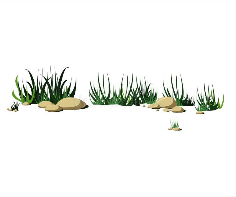 Trawa i kamienie na ziemi na słonecznym dniu ilustracji