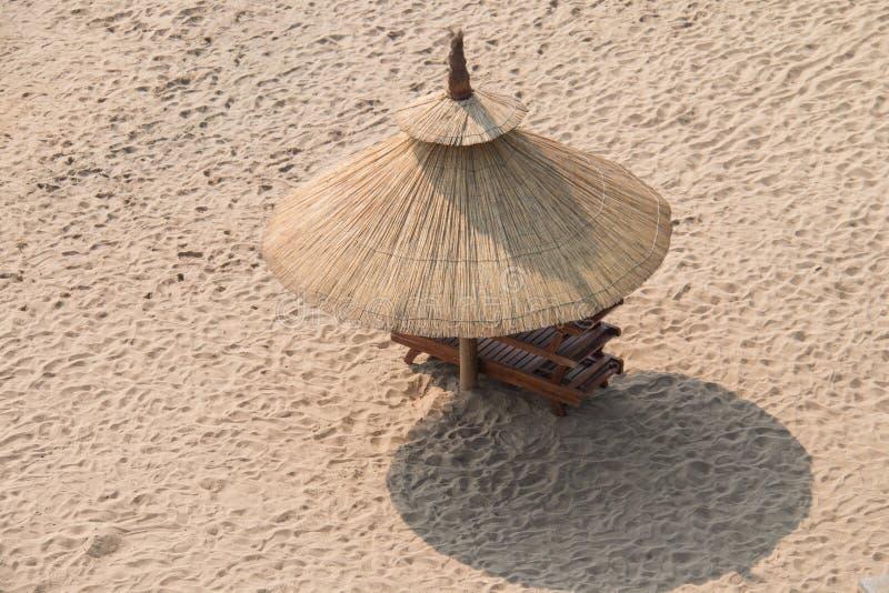 Trawa parasole obrazy stock