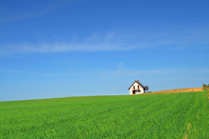 trawa pola dom trochę obrazy royalty free