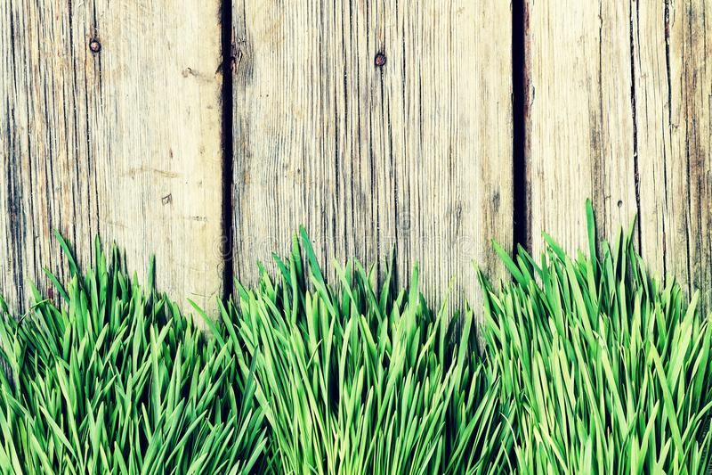 Trawa, tło, zieleń, natura, kopia, drewniana, wsiada, zasadza, pl zdjęcia royalty free
