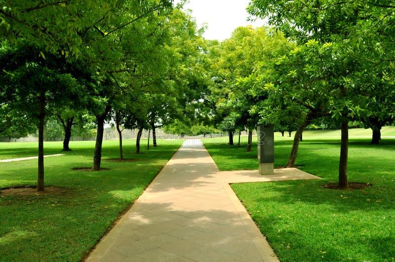 Trawa z ogrodową ścieżką zdjęcie royalty free