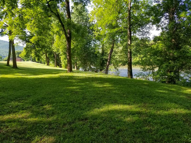 Trawiasty pagórek z drzewami i rzeka w tle zdjęcia stock