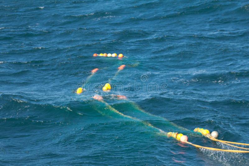 Download Trawl fishing stock photo. Image of deep, curve, fishing - 25564510