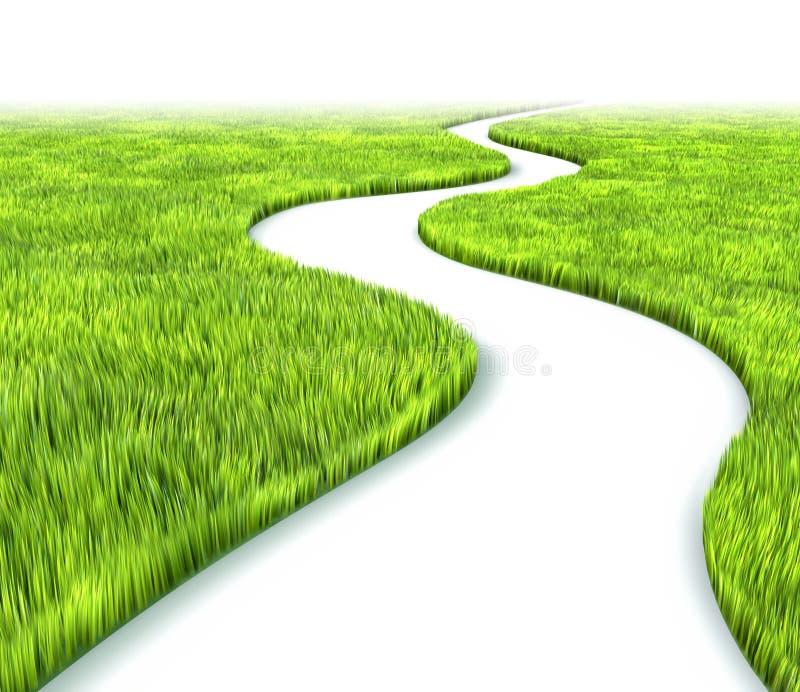 trawy ścieżka