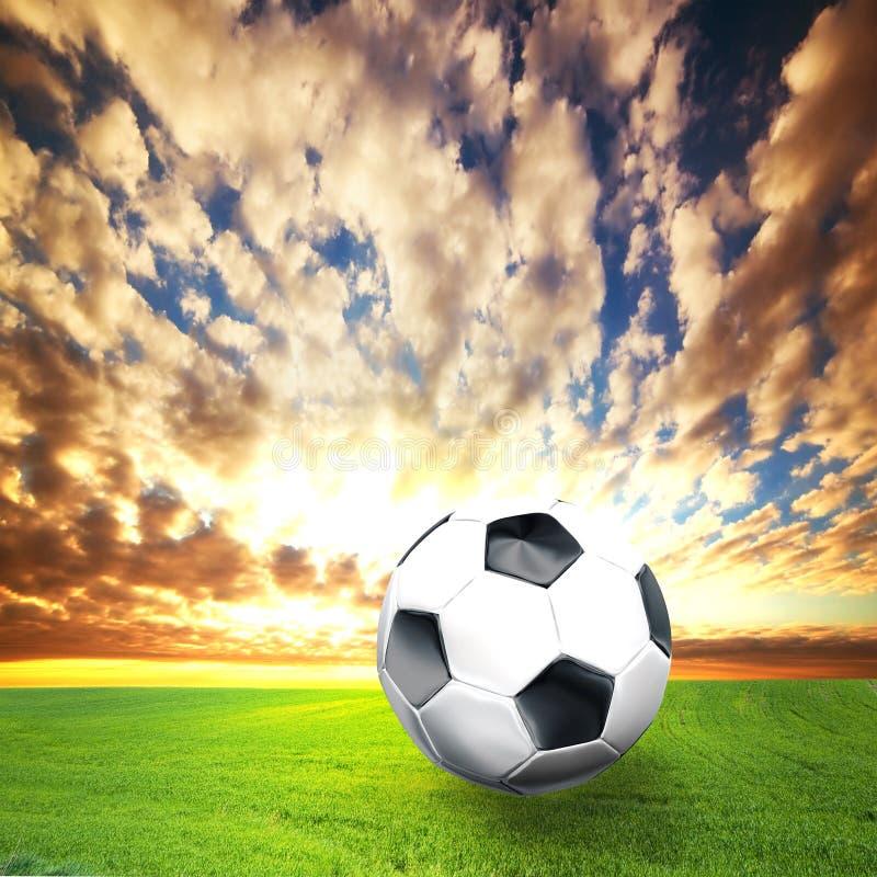 trawy balowa futbolowa piłka nożna zdjęcie stock