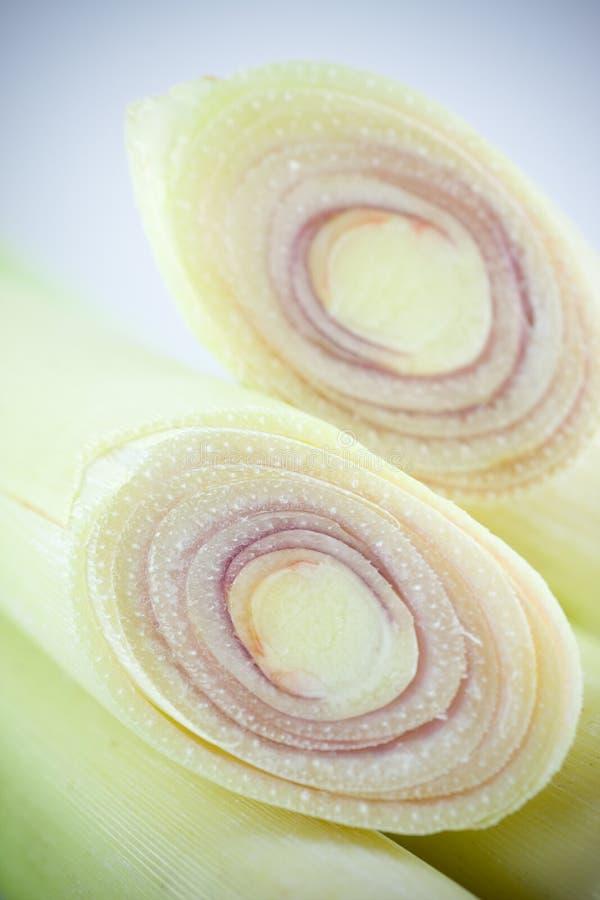 trawy cytryna fotografia royalty free